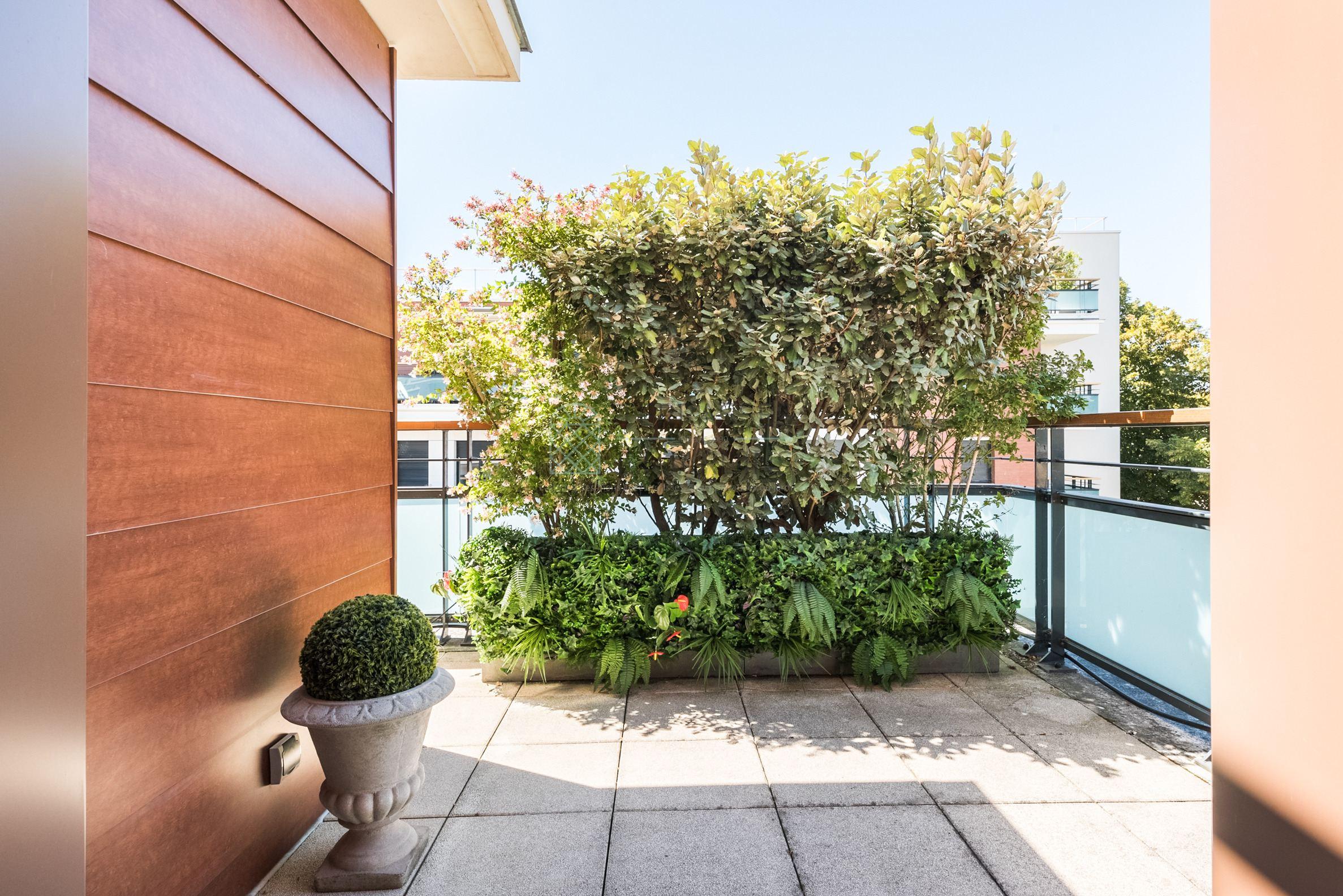 Saint Cloud – Appartement 4p – Terrasse